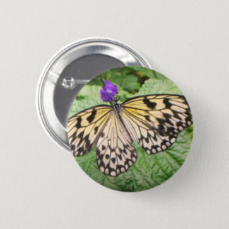Yellow and Black Butterfly 6 Cm Round Badge