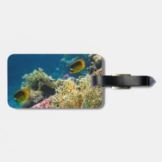 Yellow and Black Butterfly Fish Luggage Tag