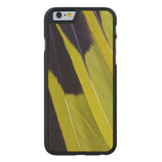 Yellow And Black Feather Abstract Carved Maple iPhone 6 Case