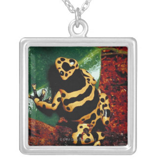 Yellow and Black Frog Silver Plated Necklace