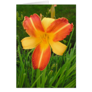 Yellow and orange flower greeting card
