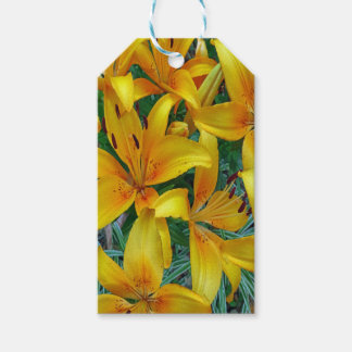 yellow and orange lily's gift tags