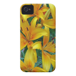 yellow and orange lily's iPhone 4 case