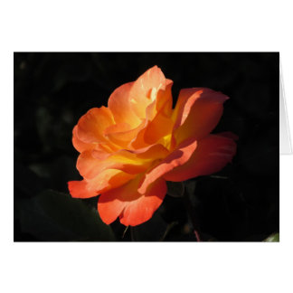 Yellow and Orange Rose Note Card