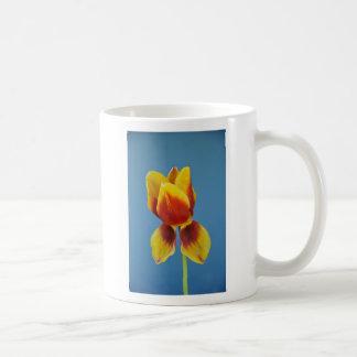 Yellow and Orange single tulip. Basic White Mug