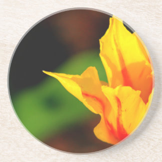 Yellow and Orange Tulip Beverage Coaster