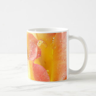 Yellow and Pink Rose Basic White Mug