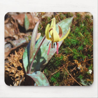 Yellow and Plum Trout Lily Mouse Mat