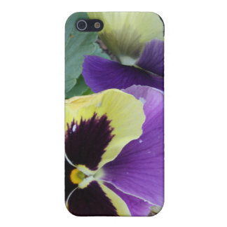 Yellow and Purple Pansy Floral Photo Covers For iPhone 5