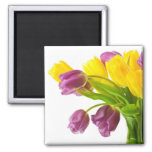 Yellow and Purple Tulips Background Customised