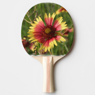 Yellow and Red Gaillardia Flowers Ping Pong Paddle