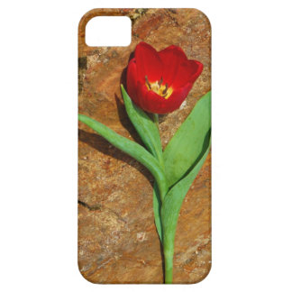 Yellow and Red Tulip iPhone 5 Cover
