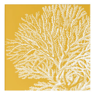 Yellow and White Coral Acrylic Wall Art