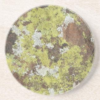 Yellow and White Lichen on Sandstone Natural Camo Coasters