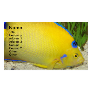 Yellow Angelfish Photo Pack Of Standard Business Cards