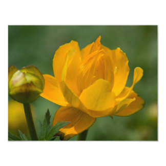 Yellow Asian Globe Flower 4.25x5.5 Paper Invitation Card