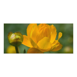 Yellow Asian Globe Flower 4x9.25 Paper Invitation Card