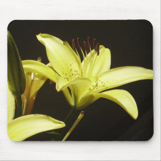 Yellow Asian Lilly Mouse Pad