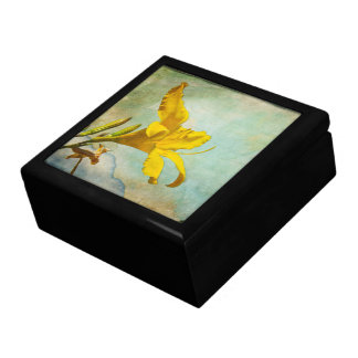 Yellow Asiatic Lily - Decorative Box