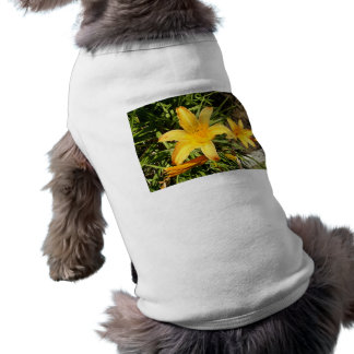 Yellow Asiatic Lily Dog T-shirt
