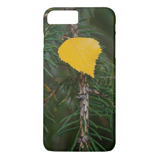 Yellow Aspen Leave on Evergreen Branch Photograph iPhone 8 Plus/7 Plus Case