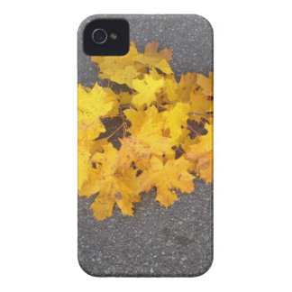 YELLOW AUTUMN LEAVES BRANCH iPhone 4 Case-Mate CASES