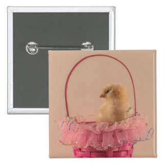 Yellow Baby Chick in Pretty Pink Basket 15 Cm Square Badge