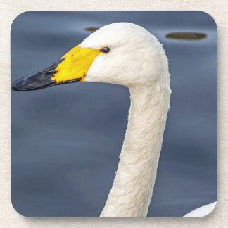 Yellow beaked swan hard plastic coasters