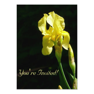 Yellow Bearded Iris Invitiation Card
