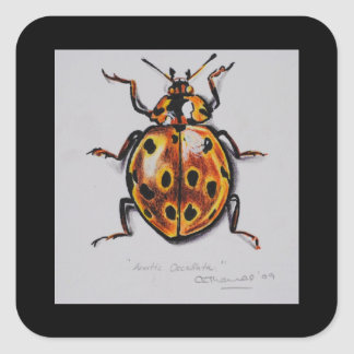 Yellow Beetle Products Square Sticker