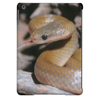 Yellow Bellied House Snake (Lamprophis Fuscus) iPad Air Cases
