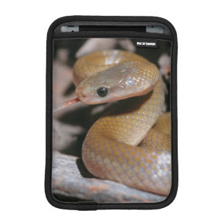 Yellow Bellied House Snake (Lamprophis Fuscus) iPad Mini Sleeve