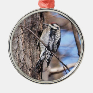 Yellow-bellied Sapsucker Ornament