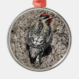 Yellow-bellied Sapsucker Silver-Colored Round Decoration