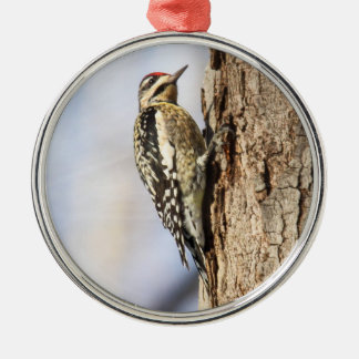 Yellow-bellied Sapsucker Christmas Tree Ornament