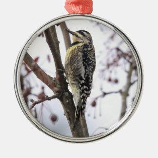 Yellow-bellied Sapsucker Round Metal Christmas Ornament