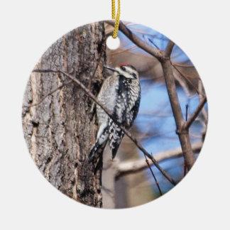 Yellow-bellied Sapsucker Christmas Tree Ornaments