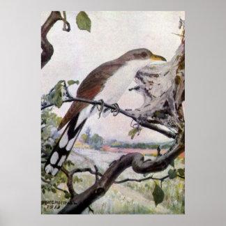 Yellow-billed Cuckoo and Tent Caterpillars Print