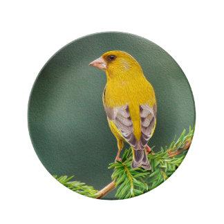 Yellow Bird on Branch Plate
