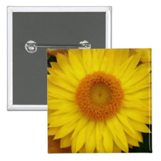 Yellow Bloom Themed 2 Inch Square Button