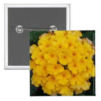 Yellow Blossoms Themed 2 Inch Square Button