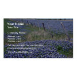 Yellow Blue bonnets flowers Double-Sided Standard Business Cards (Pack Of 100)