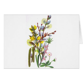 Yellow & blue flowers greeting card