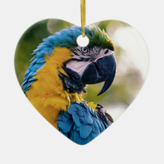 Yellow Blue Macaw Parrot Christmas Ornament