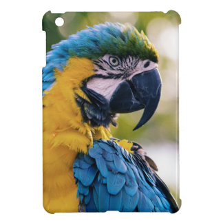 Yellow Blue Macaw Parrot iPad Mini Cases
