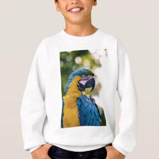 Yellow Blue Macaw Parrot Sweatshirt