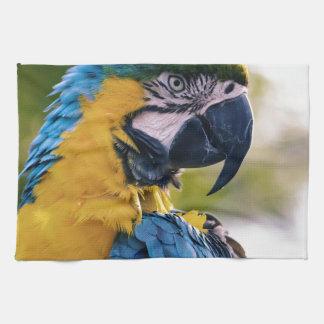 Yellow Blue Macaw Parrot Tea Towel