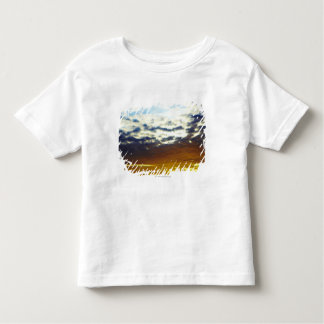 Yellow Blue Moody Sunset with Clouds Toddler T-Shirt