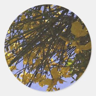 Yellow Broom Classic Round Sticker