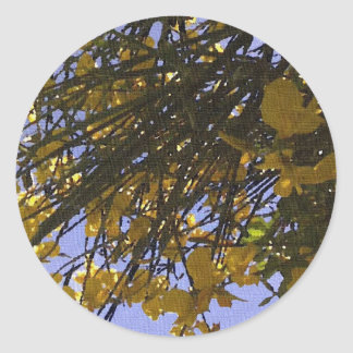 Yellow Broom Round Sticker